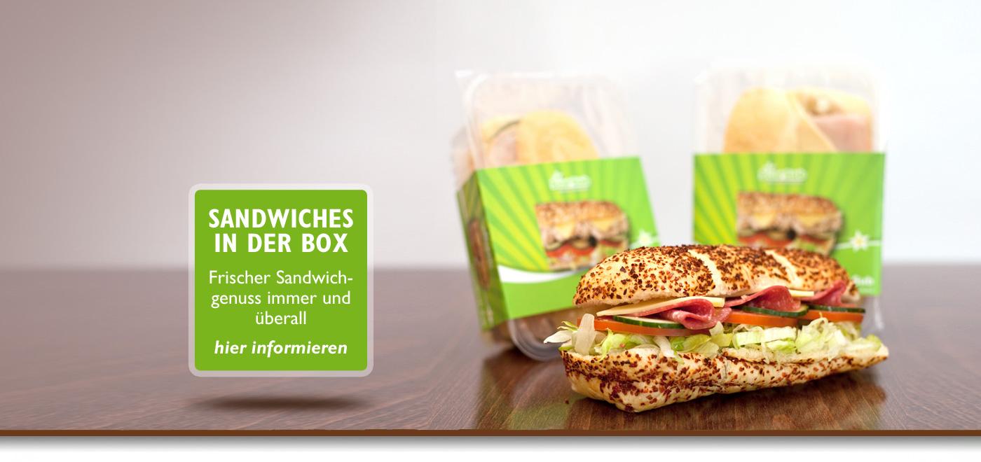 sandwich-box-3